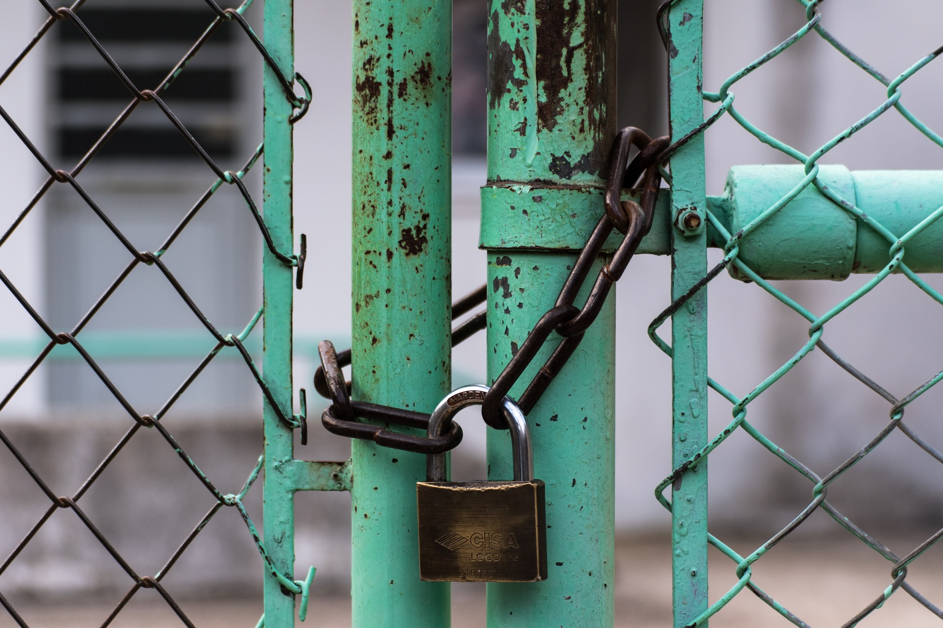 padlock securing green gate with a chain